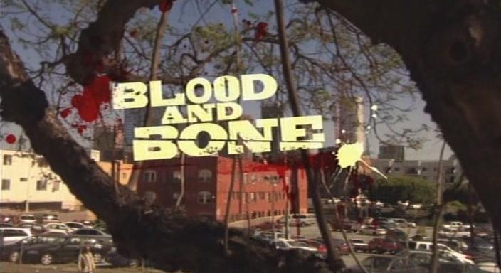 Кровь и кость (2009) / Blood and Bone